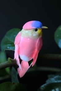 Little clip on bird - pink, £2.50 from Rockett St George